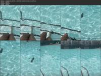 234545994_sundaebunsdae-2021-08-26-2203293463-i-perform-best-when-i-m-wet-mp4.jpg