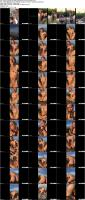vixen-20-07-09-ivy-wolfe-intimates-series-xxx-1080p_s.jpg