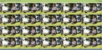 235572521_30-08-2021-ifeelmyself-catalina-s-video-profile-by-catalina_g-mp4.jpg