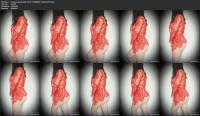 236618634_princess_gush-2020-07-09-515885064-thick-butt-mp4.jpg