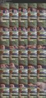 236635346_25-05-2020-5ecbbde9ef7781598c793_source-mp4.jpg